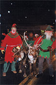 Reindeer pulling a sleigh in a parade